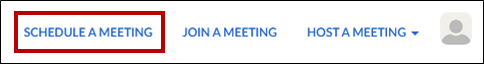 schedule a meeting button